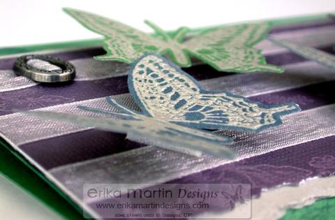 Butterflynew2